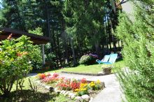 Foto 1 di Bed and Breakfast - La Pineta